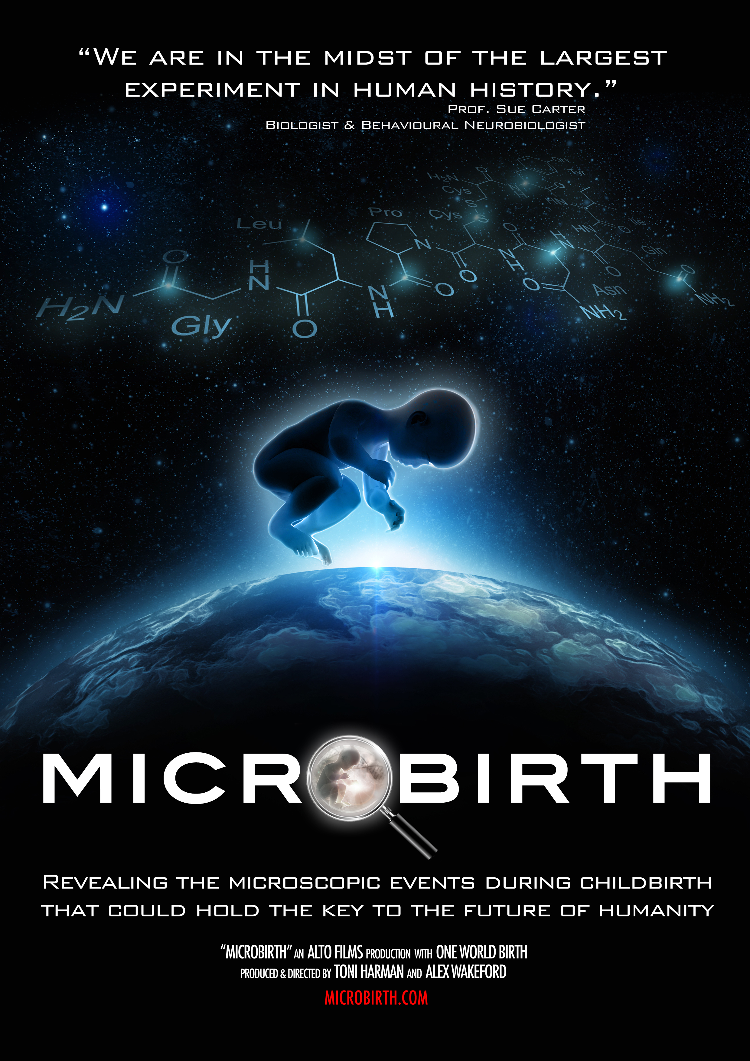 MicroBirth_Poster_PORTRAIT_A4